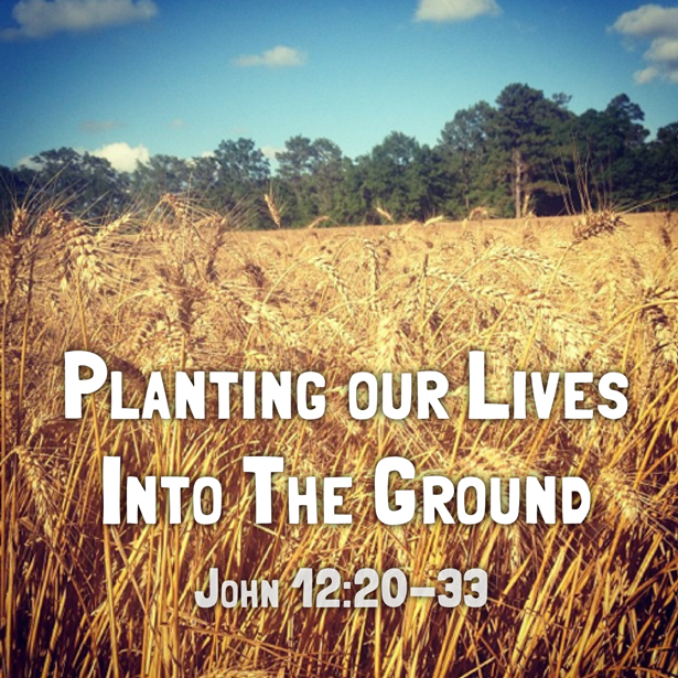 Planting Our Lives Into the Ground